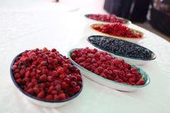 Frutos da floresta Imagem de Stock