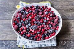 Frutos da floresta Fotos de Stock Royalty Free