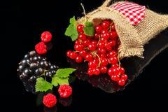 Frutos da framboesa, do corinto preto e do corinto vermelho em um fundo escuro Imagem de Stock