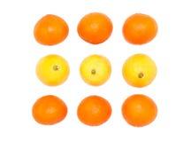 Frutos da laranja e do limão fotografia de stock