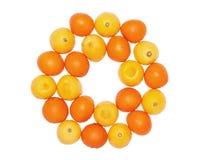 Frutos da laranja e do limão imagem de stock royalty free