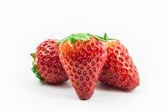 Frutos da morango isolados no fim branco acima e no tiro macro imagens de stock royalty free
