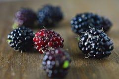 Frutos das amoras-pretas sob a vista macro de madeira fotos de stock