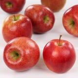 Frutos das maçãs de Apple em uma placa de madeira Fotos de Stock Royalty Free