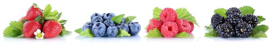 Frutos de baga dos mirtilos da coleção das morangos das bagas em um ro Imagem de Stock Royalty Free