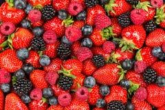 Frutos de baga misturados Fotografia de Stock