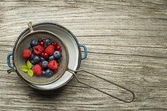 Frutos de bagas frescos misturados Fotografia de Stock Royalty Free