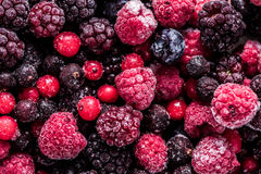 Frutos de bagas selvagens congelados da floresta do verão, fundo completo do quadro Fotos de Stock Royalty Free