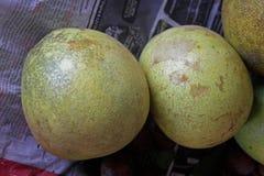 Frutos de marmelos de Crateva foto de stock