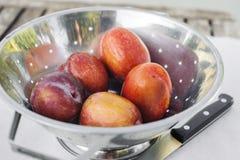 Frutos de Pluot do amigo em um filtro de aço inoxidável com faca imagem de stock