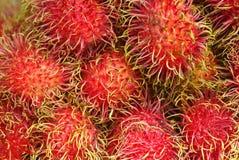 Frutos deliciosos do Rambutan de Tailândia fotografia de stock