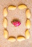 Frutos, dieta e conceito saudável do alimento - próximos acima da manga com fruto do dragão Fotos de Stock