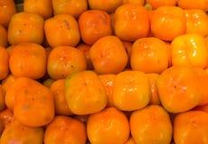 Frutos do caqui Fotografia de Stock