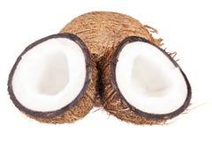 Frutos do coco isolados no fundo branco, fim acima Imagens de Stock