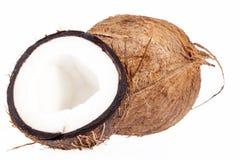 Frutos do coco isolados no fundo branco, fim acima Fotografia de Stock Royalty Free