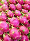 Frutos do dragão Imagem de Stock