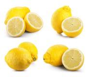 Frutos do limão fotografia de stock royalty free