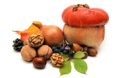 Frutos do outono Imagens de Stock