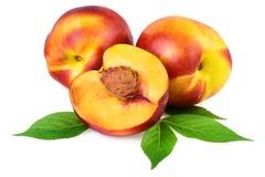 Frutos do pêssego da nectarina isolados no branco imagens de stock royalty free