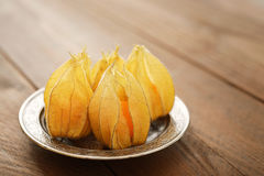 Frutos do Physalis Imagem de Stock Royalty Free