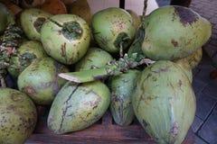 Frutos dos cocos Imagens de Stock Royalty Free