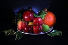 Frutos e abóbora Fotografia de Stock