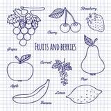 Frutos e baga da tração da mão Imagens de Stock
