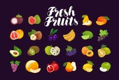 Frutos e bagas, grupo de ícones Alimento, greengrocery, conceito da exploração agrícola Ilustração do vetor Fotografia de Stock