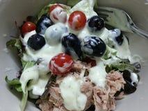 Frutos e salada de atum Fotografia de Stock Royalty Free