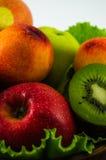 Frutos em um fundo branco Imagens de Stock