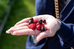 Frutos em uma mão Fotos de Stock Royalty Free