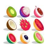 Frutos exóticos cortados no grupo da metade de ícones brilhantes ilustração stock