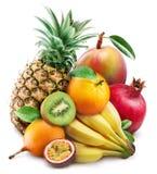 Frutos exóticos Fotografia de Stock Royalty Free