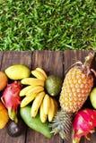 Frutos exóticos misturados no fundo de madeira Comer saudável, fazendo dieta Vista superior com espaço da cópia da grama Imagens de Stock Royalty Free