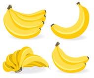 Frutos frescos da banana Imagem de Stock