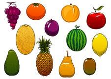 Frutos frescos e bagas doces no estilo dos desenhos animados Imagens de Stock