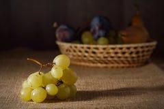 Frutos frescos no pano de saco após a colheita Foto de Stock