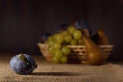 Frutos frescos no pano de saco após a colheita Fotografia de Stock
