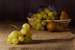 Frutos frescos no pano de saco após a colheita Fotos de Stock