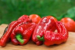 Frutos frescos vermelhos da pimenta Imagens de Stock Royalty Free