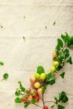 Frutos frescos vermelhos e amarelos doces no pano Imagens de Stock