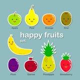 Frutos lisos ajustados Fotos de Stock Royalty Free