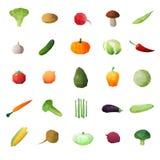 Frutos maduros do Greengrocery ajustados ilustração do vetor