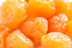 Frutos preservados ou ameixa secada do chinês do mel Imagens de Stock Royalty Free