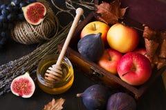 Frutos sazonais do outono Fotografia de Stock Royalty Free