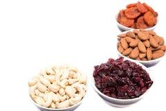 Frutos secados no fundo branco Imagem de Stock