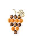 Frutos secos con las tuercas Fotografía de archivo