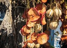 Frutos secos e vegetal de suspensão, cores vibrantes Fotos de Stock Royalty Free