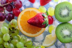 Frutos suculentos no gelo Foto de Stock