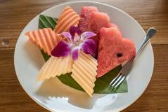 Frutos tropicais ajustados Imagem de Stock